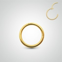 Yellow gold clicker ring nipple piercing
