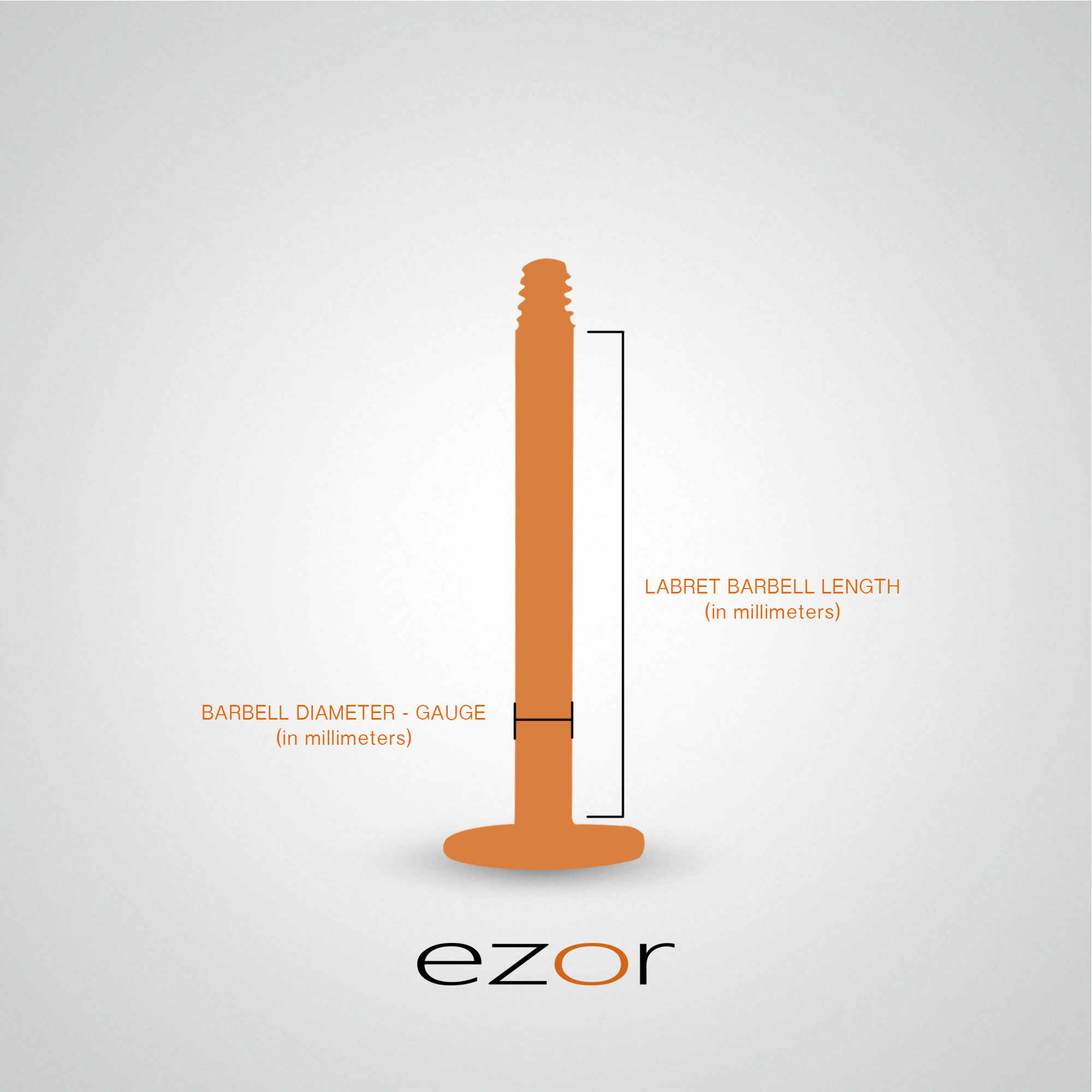 measurement-size-labret-screw